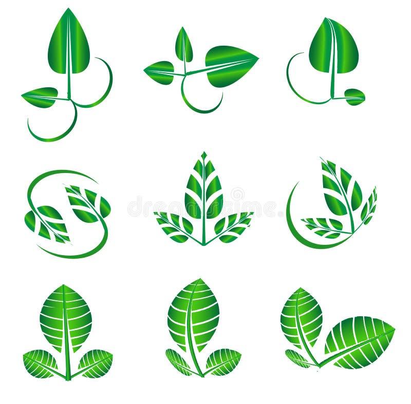 Vector abstract glanzend groen die blad voor organische, natuurlijke, ecologie, biologie, natuurlijke logotypevormen wordt geplaa royalty-vrije illustratie