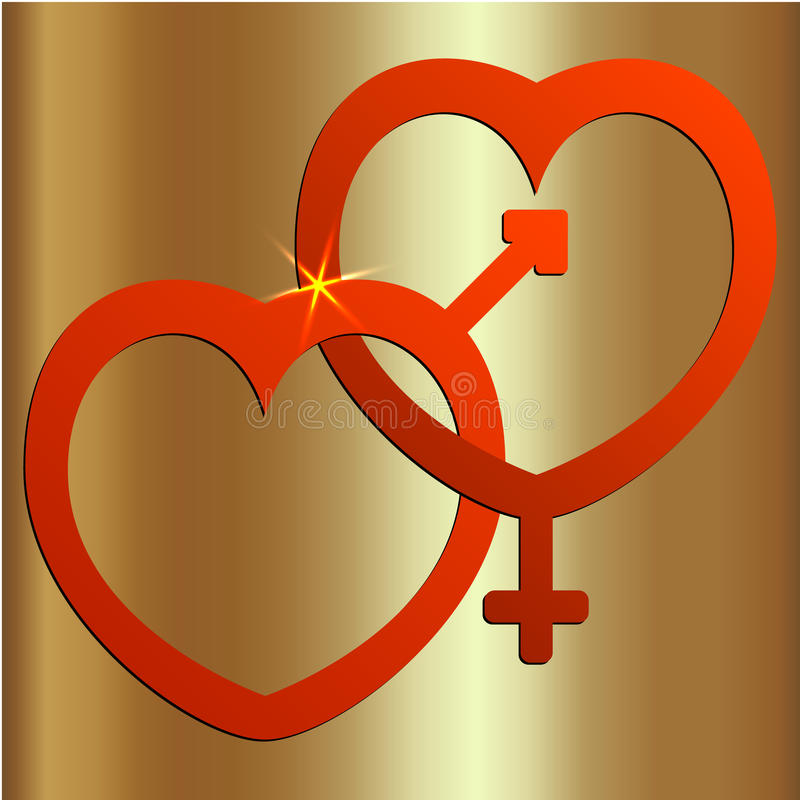 Vector abstracte illustratie van twee harten met mannelijke en vrouwelijke tekens vector illustratie