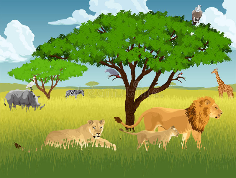 Vector african savannah with lions, rhino, girrafe, vulture, zebra and heron stock illustration