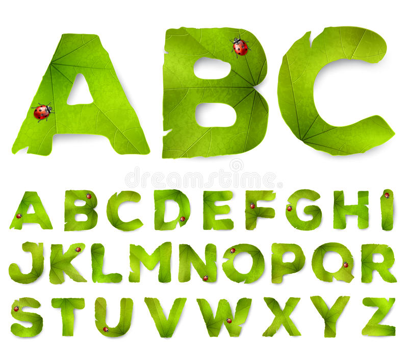 Vector alphabet letters made from green leaves royalty free illustration