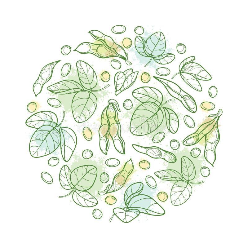 Vector alrededor de manojo con la vaina de haba de la soja o de la soja del esquema con las habas y la hoja adornada en verde en  stock de ilustración