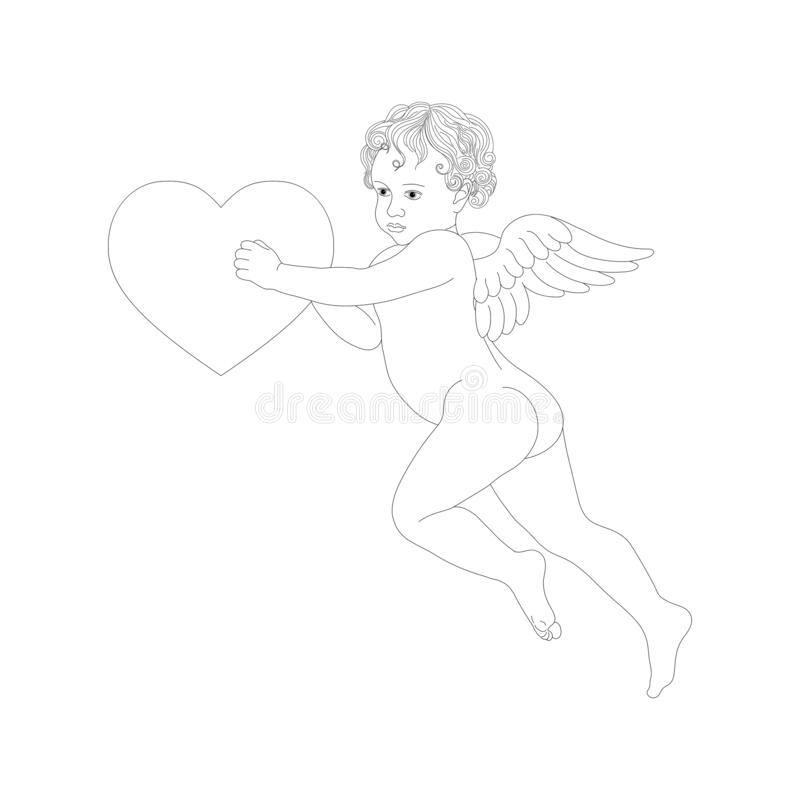 Vector angel with wings holding heart. Cupid with contour lines stock photography