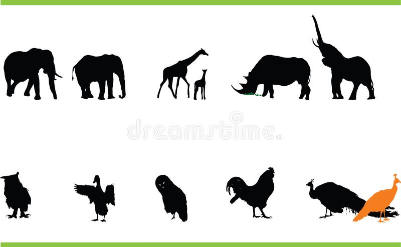 Vector Animals Collection Free Stock Images