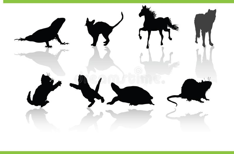 Vector Animals Collection Stock Photos