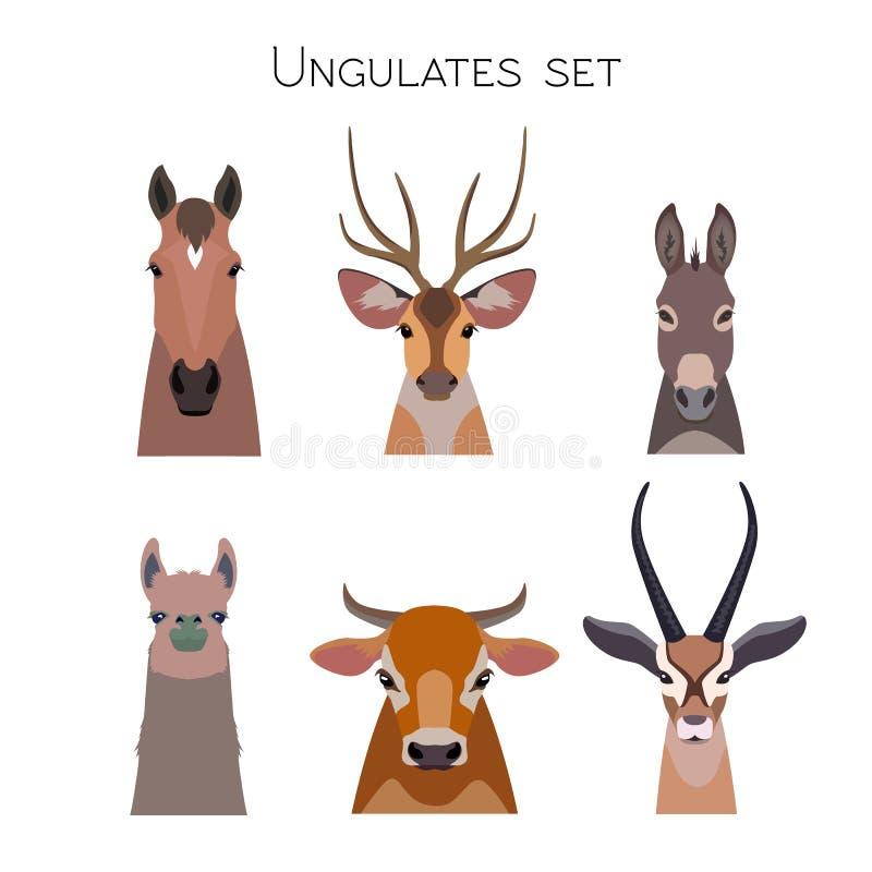 Vector animals heads set. Lama deer antelope donkey horse cow. Vector ungulates cloven hoofed animals set. Lama deer, antelope, donkey horse cow bull royalty free illustration