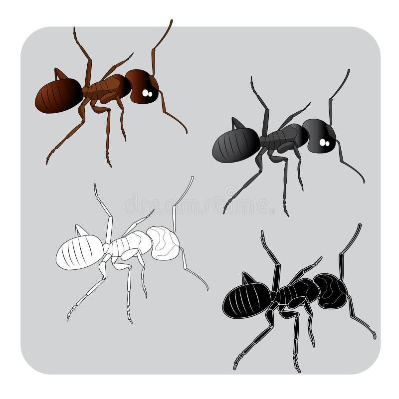 Download Vector Ant Stock Vector - Image: 83723276