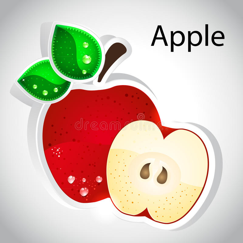 Free Vector Apple Stock Image - 21971451