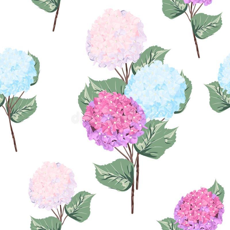 Vector ausführliches nahtloses Muster von Hortensieblumen auf weißem Hintergrund stock abbildung