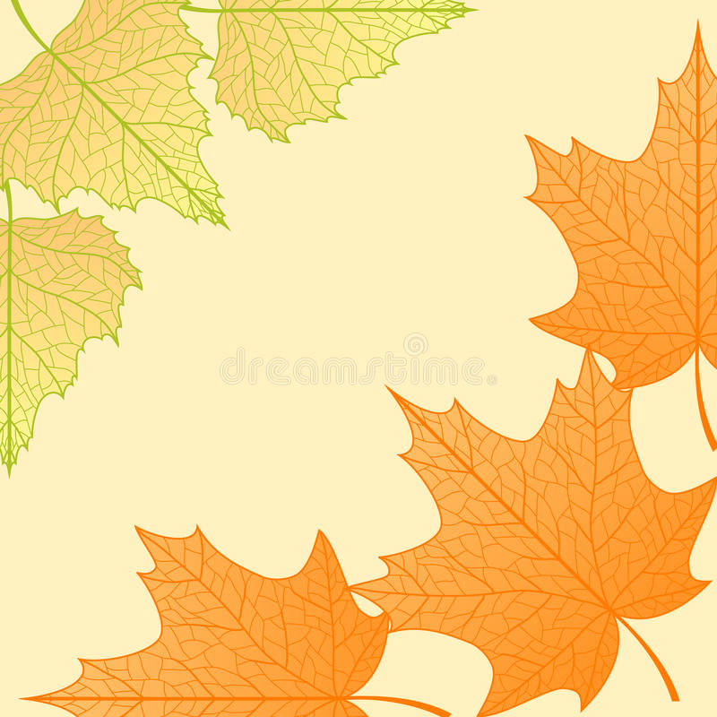 Download Vector Autumn Background. Stock Images - Image: 20786324