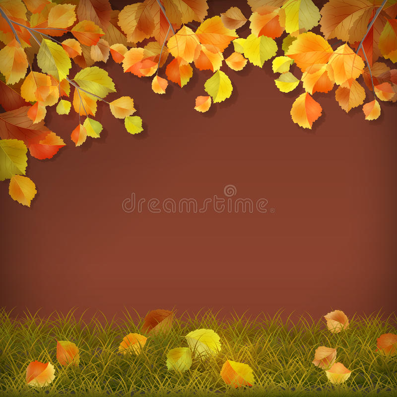 Vector autumn fall leaves. Vector season background with autumn tree branches, fall leaves on grass royalty free illustration
