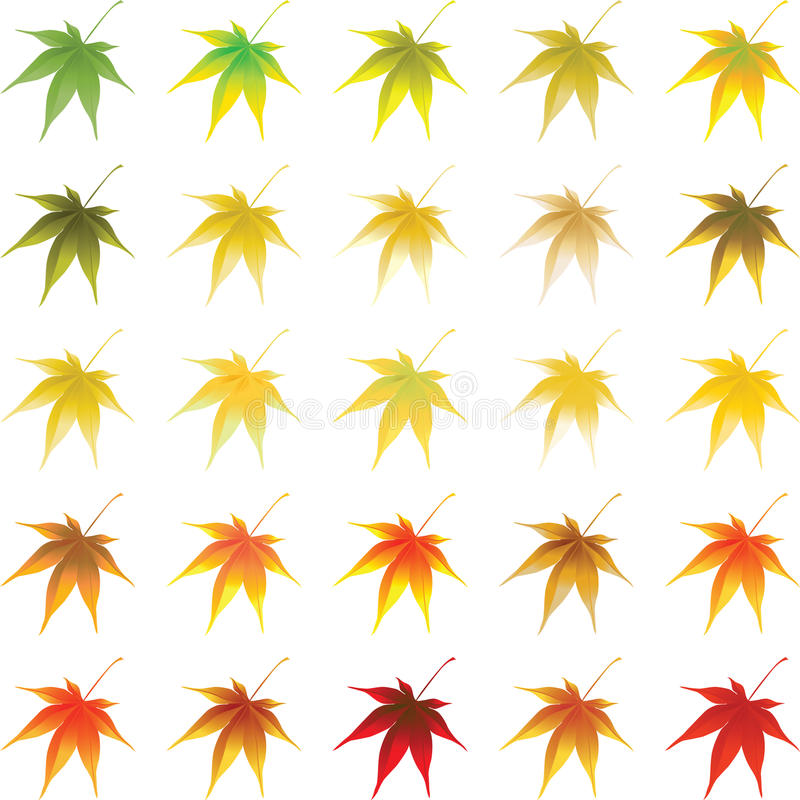 Download Vector autumn leaves stock vector. Image of leaf, halloween - 15931656