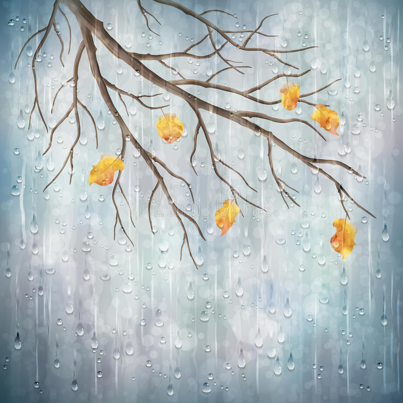 Vector autumn rain weather artistic natural design stock illustration