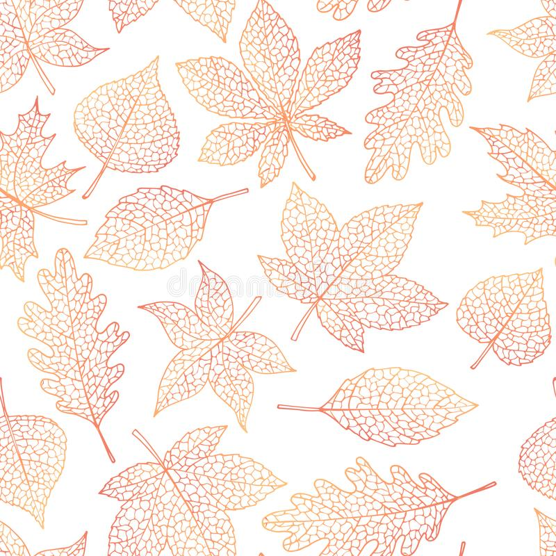 Vector autumn seamless pattern with oak, poplar, beech, maple, aspen and horse chestnut leaves outline on the white background. Fall line art of foliage stock illustration