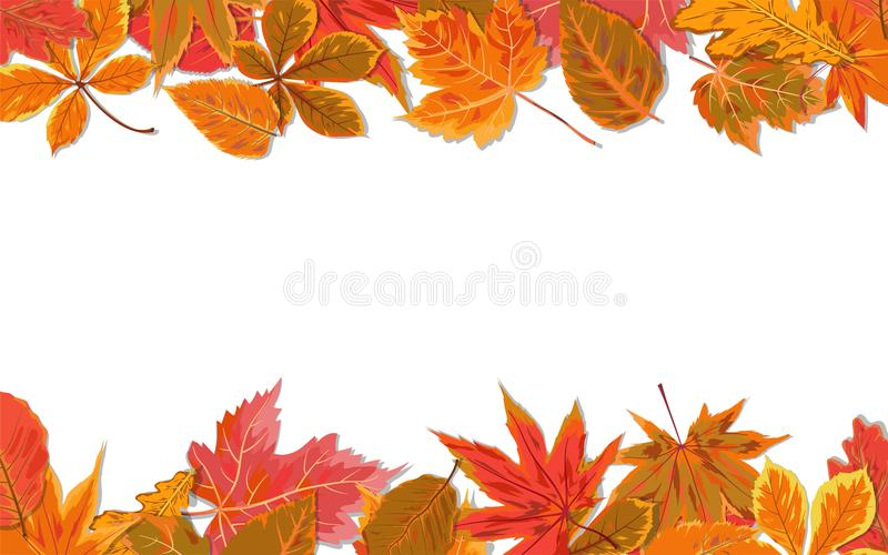 Vector autumn seasonal watercolor style Fall maple chestnut alder tree red orange color leaves border. Nature forest leaf foliage royalty free illustration