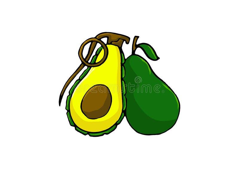 Vector of avocado grenade fruit royalty free stock photos