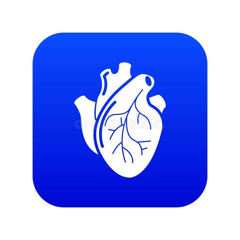 Vector azul del corazón del icono humano del órgano ilustración del vector