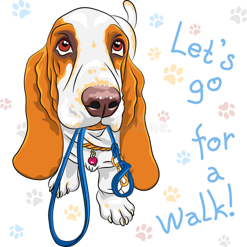 Vector baby dog Basset Hound breed stock illustration
