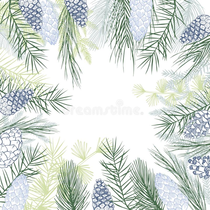 Vector background  with Christmas plants. stock illustration