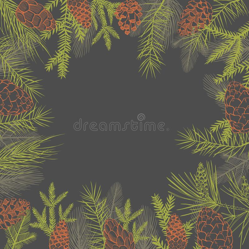Vector background  with Christmas plants. vector illustration