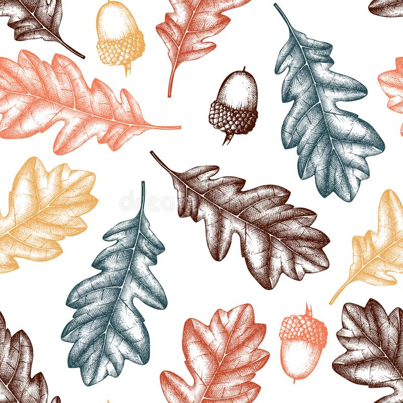 Vector background with hand drawn oak trees seeds and leaves. Vintage autumn design. Botanical garden elements. Seamless acorn pa royalty free illustration