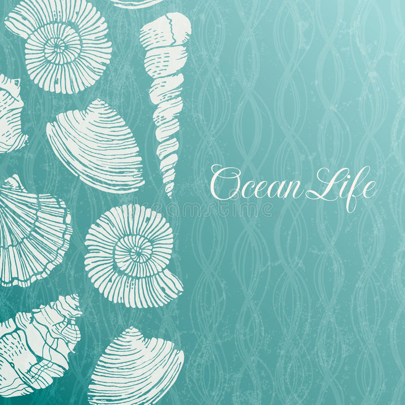Vector background with sea shells. EPS 10 vector illustration