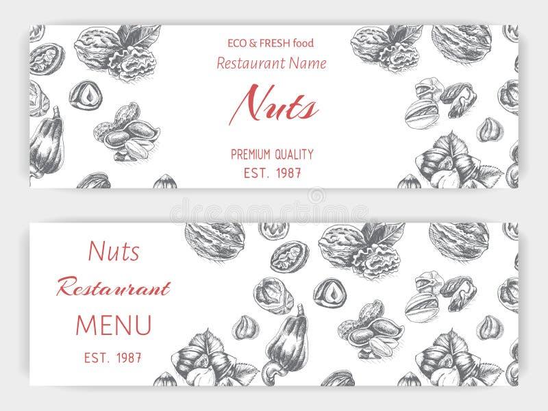 Vector background sketch walnuts, peanut, cashew, hazelnut, almonds, pistachio nut stock illustration