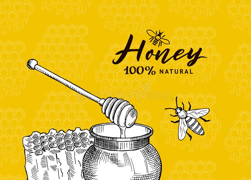 Vector background with sketched contoured honey theme elements on honeycombs background royalty free illustration