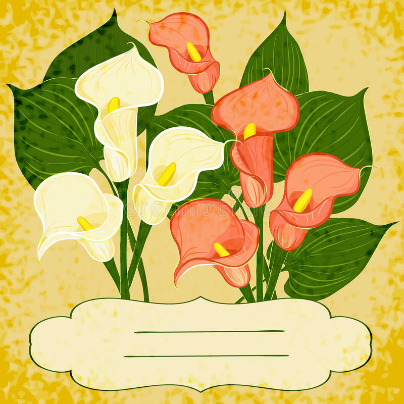 Free Vector Background With Vignette And Flowers Royalty Free Stock Photography - 34115737