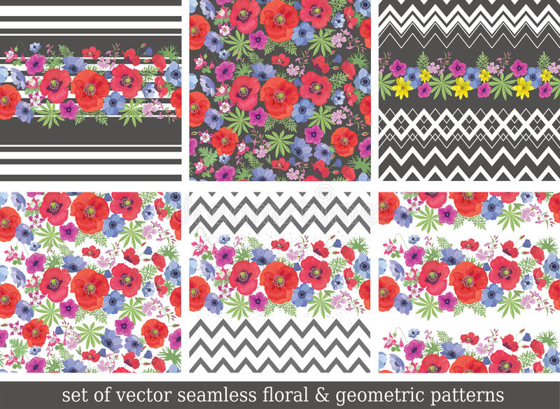 Vector Backgrounds with Garden Flowers. royalty free illustration