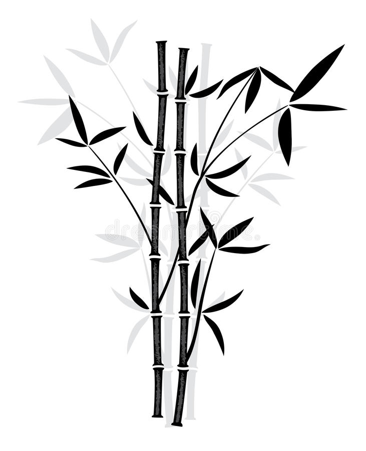 vector bamboo stock vector illustration of bamboo asia 22588480 rh dreamstime com bamboo vector art bamboo victorian desk