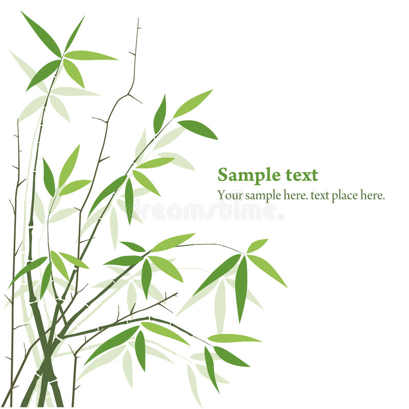 Vector Bamboo. Bamboo plants background with copy space. frame royalty free illustration