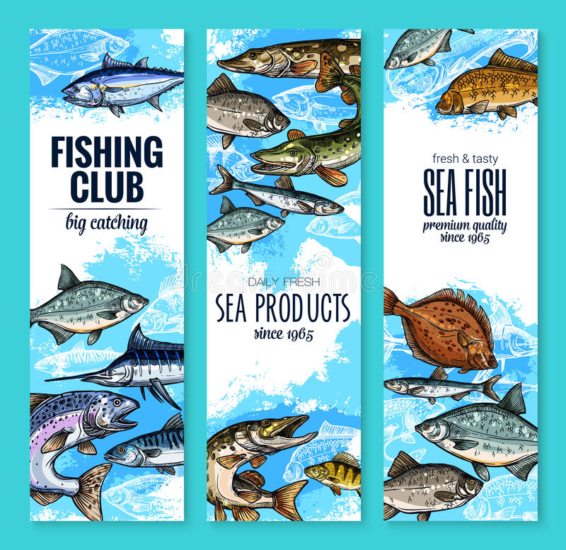 Vector banners set of fish catch for fishing club. Fishing club banners of fresh fisherman fish catch. Vector set of sea marlin, flounder or salmon and tuna royalty free illustration