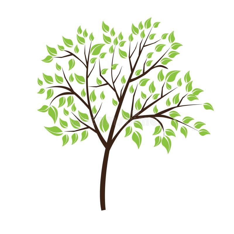 Vector Baum stock abbildung