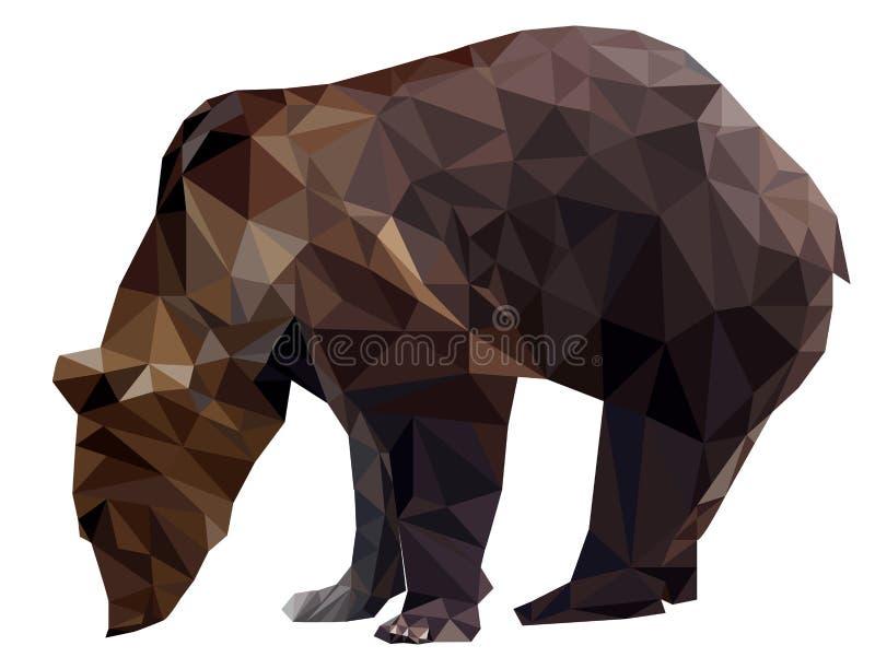 Vector bear vector illustration