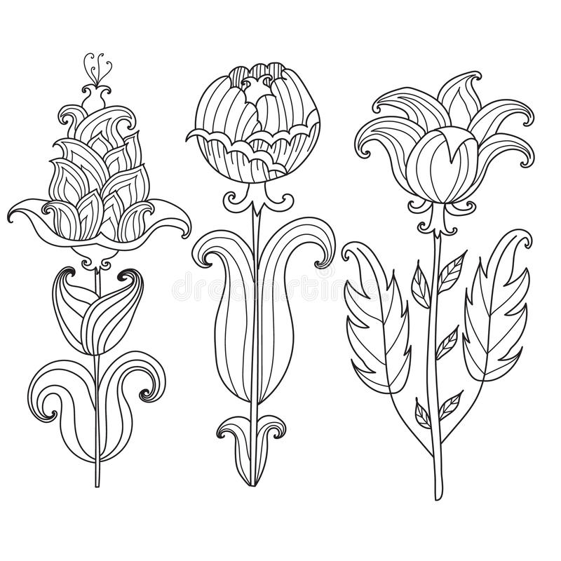 Vector Beautiful Monochrome Contour Flower, Floral Design Element.Coloring page for adults coloring book. royalty free illustration