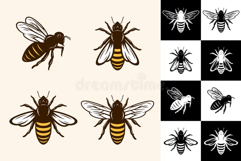 Vector bee icons. Collection on different backgrounds vector illustration