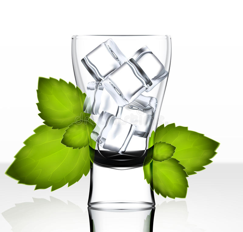 Vector beer glass with ice and mint. Clear transparent vector glass on bright background vector illustration