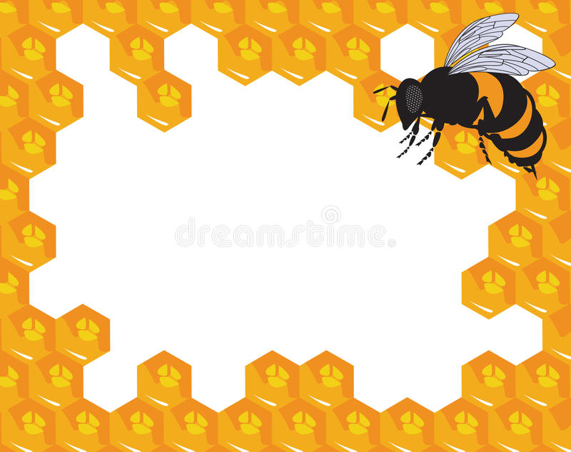 The vector bees and honeycomb with honey stock illustration