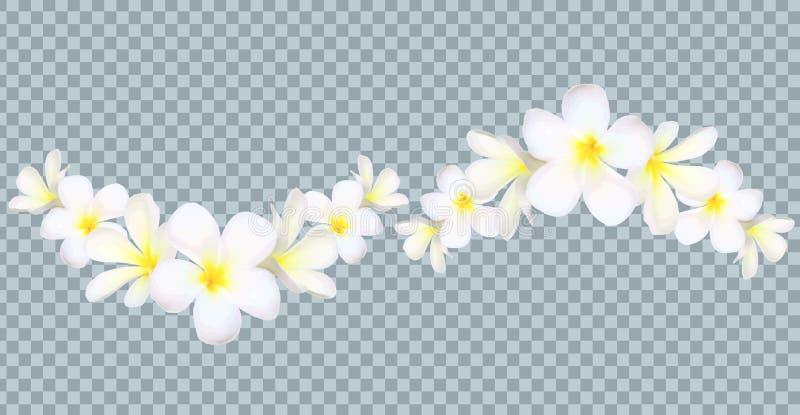 Vector a beira das flores de Bali no fundo da grade da transparência ilustração royalty free