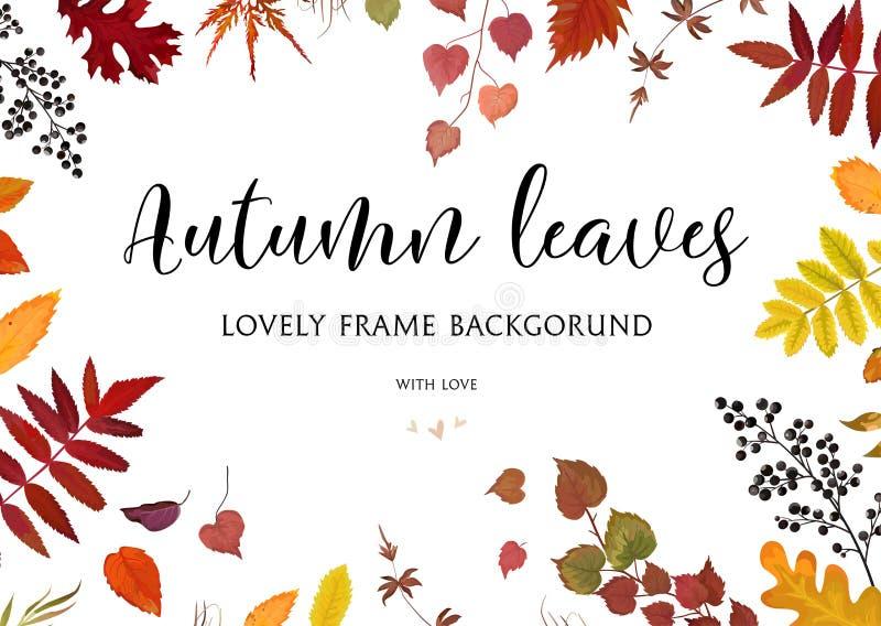 Vector a beira floral do outono do projeto de cartão do estilo da aquarela, quadro: ilustração stock