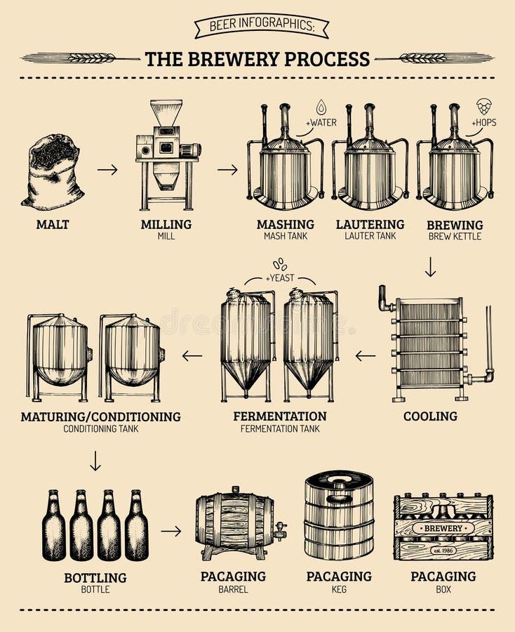 Vector Bier infographics mit Illustrationen des Brauereiprozesses Ale, Design vorlegend Lagerproduktion skizzierte Entwurf lizenzfreie abbildung