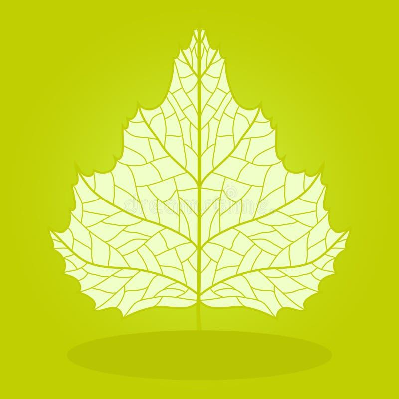 Download Vector birch. stock vector. Illustration of ornate, leaf - 27708132