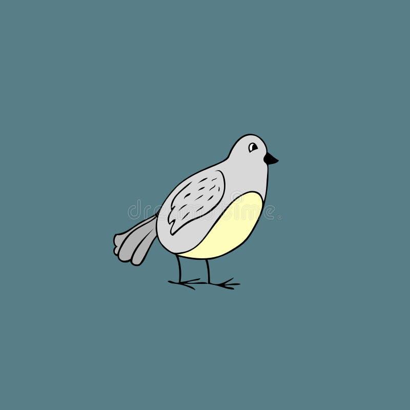 Vector bird. Cartoon illustration. Vector illustration of baby bird. cartoon animal vector illustration