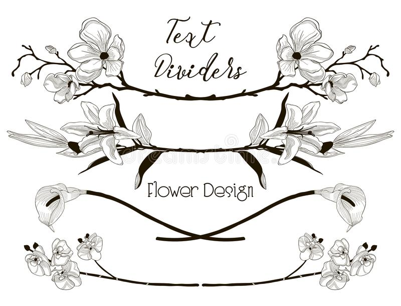 Vector Black Floral Text Dividers. Flower Design Elements stock illustration