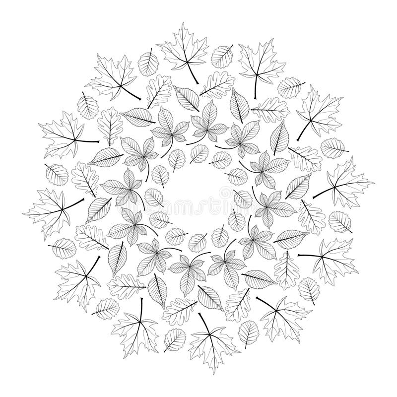 Vector black and white round autumn mandala with leaves of maple, oak, beech, horse chestnut and alder. Adult coloring book page royalty free illustration