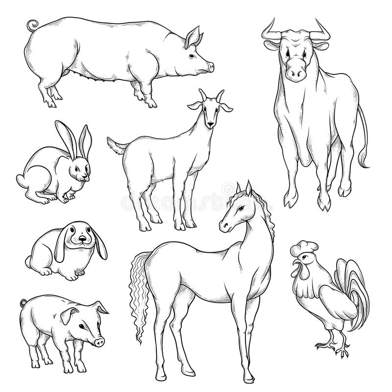 Vector black and white sketch set of isolated farm animals. Collection of silhouettes agricultural pets. Horse rooster vector illustration