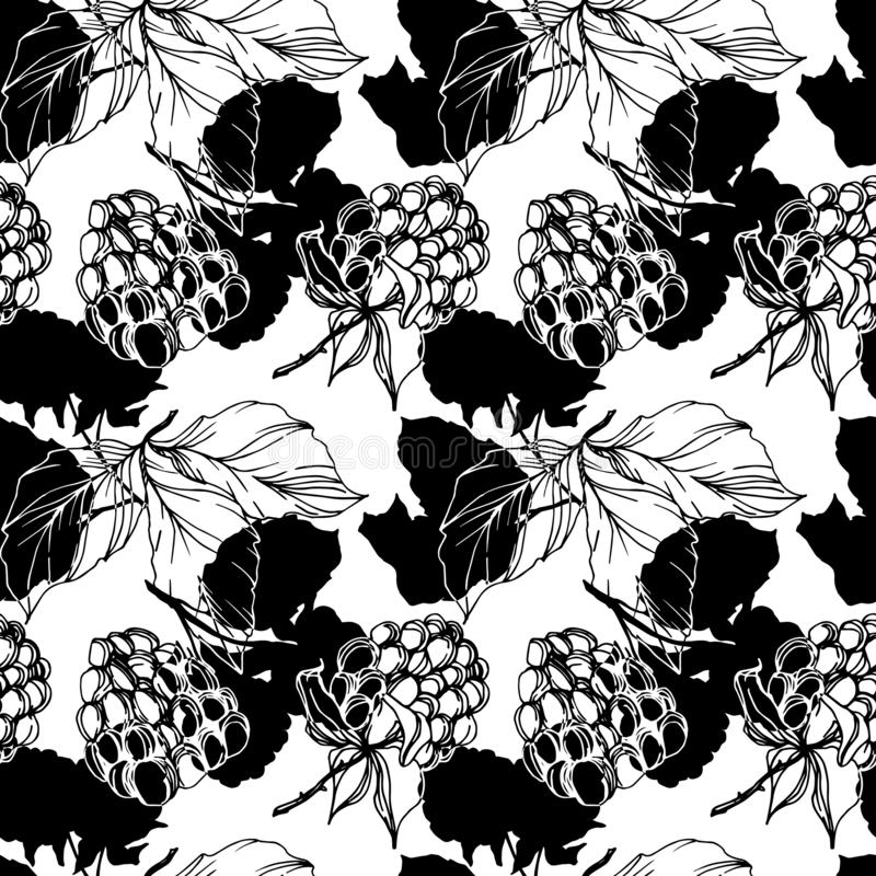 Vector Blackberry healthy food. Black and white engraved ink art. Seamless background pattern. Fabric wallpaper print texture on white background stock illustration