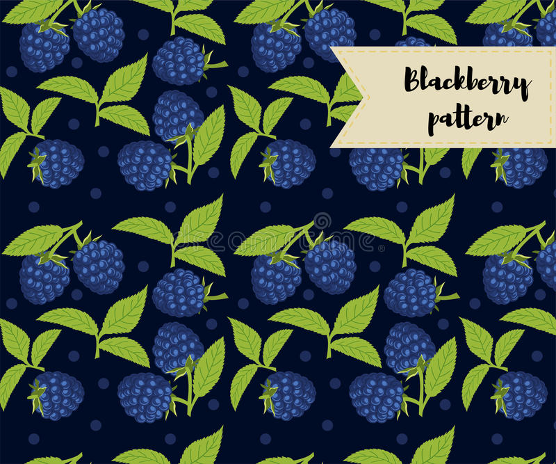 Vector blackberry seamless pattern. background, pattern, fabric design, wrapping paper, cover. Vector blackberry seamless pattern. background, pattern, fabric stock illustration