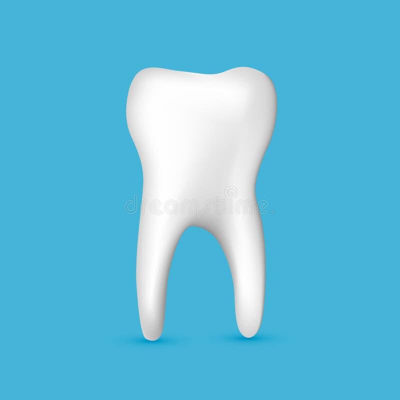 Vector blanco realista hermoso del dentista del diente en fondo azul libre illustration