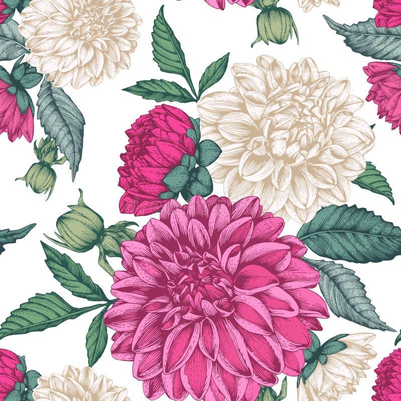 Vector bloemen naadloos patroon met dahlia's royalty-vrije illustratie